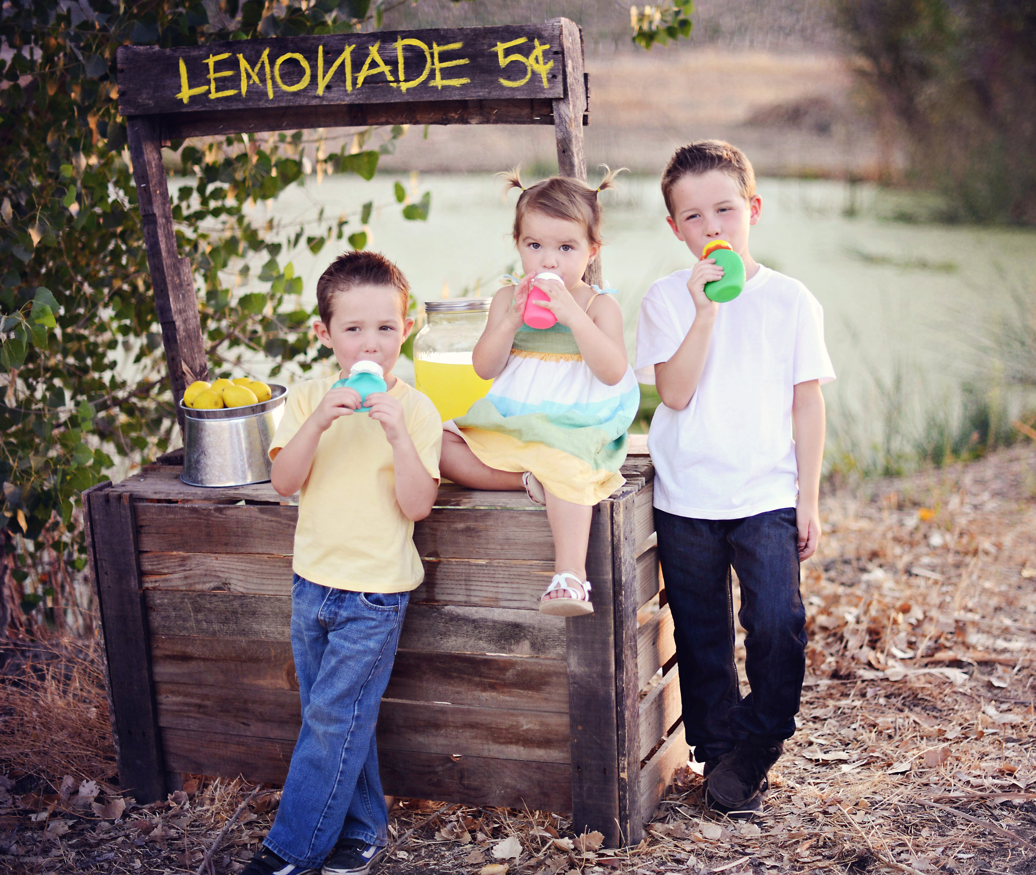 3 kids lemonade stand